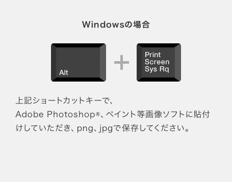 確認画像JPEG・スクリーンショット画像作成方法 Windows